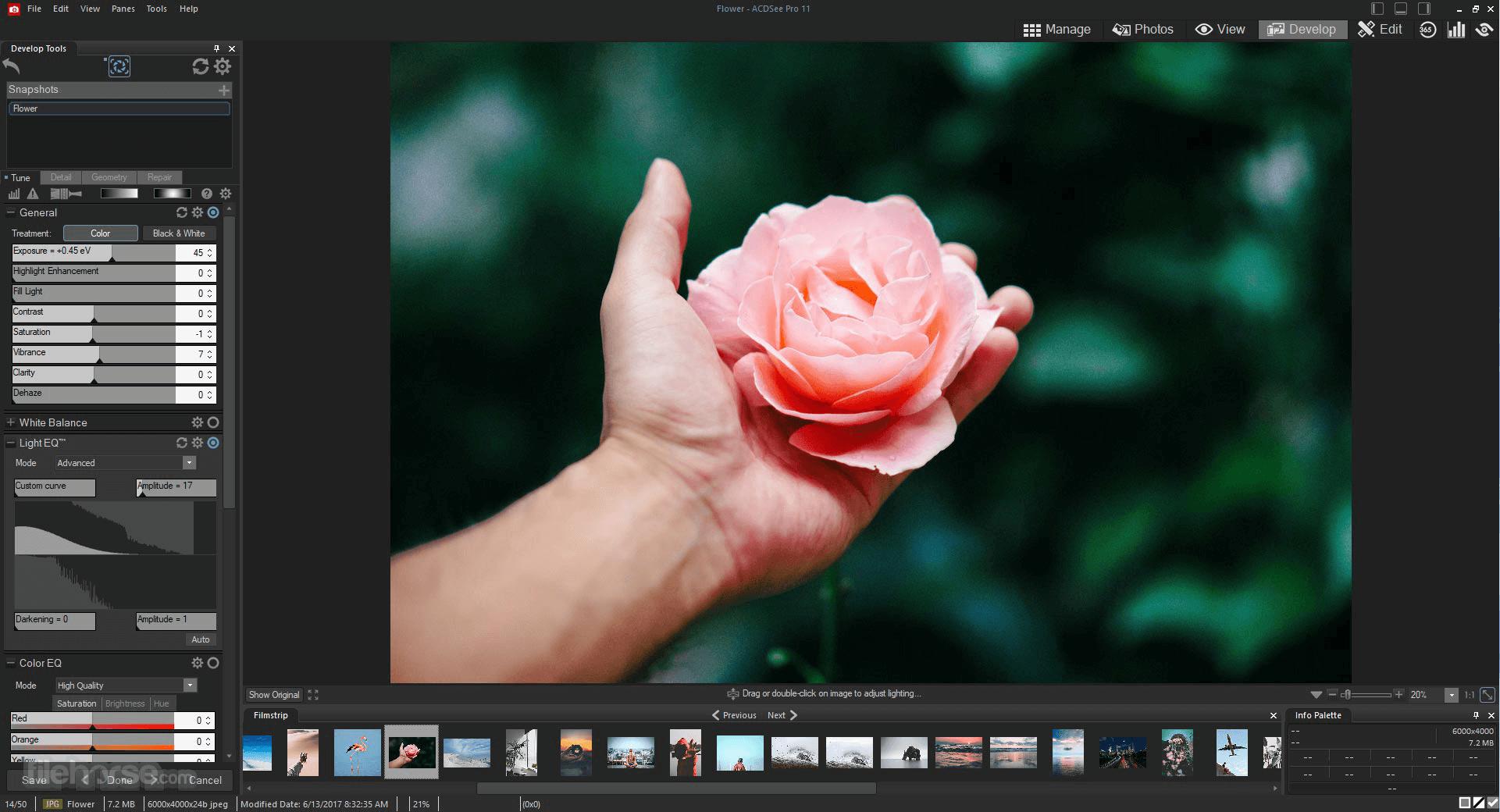 تحميل برنامج تعديل الصور 2019 ACDSee Photo Studio Professional للكمبيوتر acdsee-photo-studio-